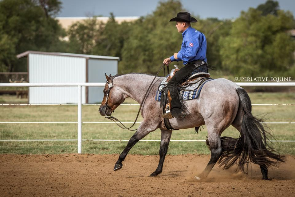 Great American Stallion Incentive