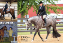 3 Internet Horse Auctions Close This Week