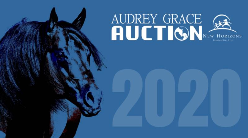 Audrey Grace Auction 2020