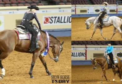 AQHA Select World Horsemanship