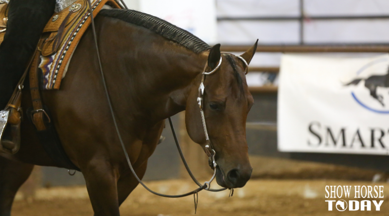 AQHA Select World Western Pleasure