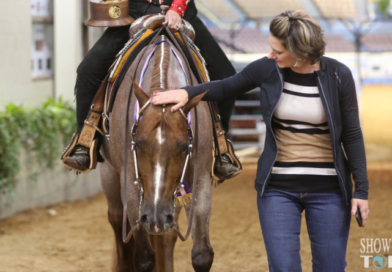 November 11th AQHA World Show Candids